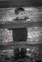 boy on a fence