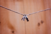 wedding rings are tied in a knot on a string