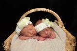 newborn twins in a basket
