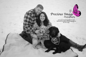 Save the date photo with dogs
